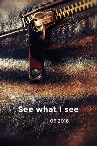 See what I see 06.2016