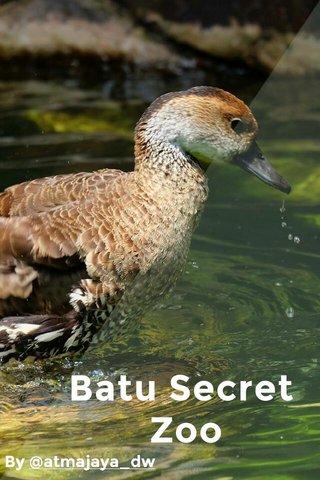 Batu Secret Zoo By @atmajaya_dw