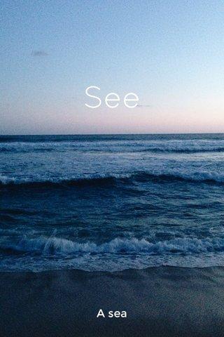 See A sea