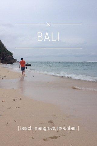 BALI | beach, mangrove, mountain |