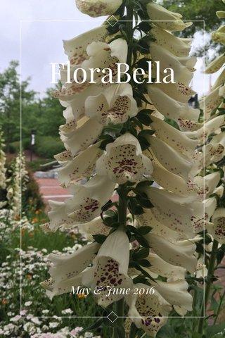 FloraBella May & June 2016