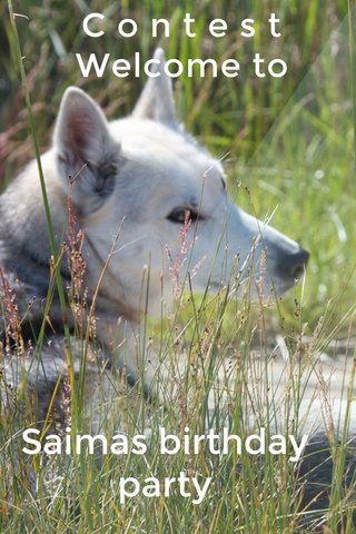 C o n t e s t Welcome to Saimas birthday party