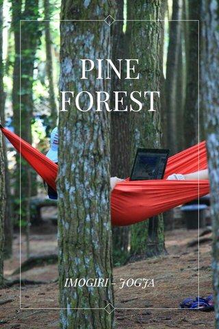 PINE FOREST IMOGIRI - JOGJA