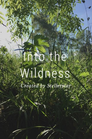 Into the Wildness Created by Stellerstar