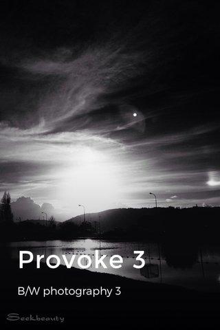 Provoke 3 B/W photography 3