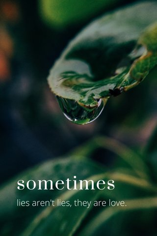 sometimes lies aren't lies, they are love.