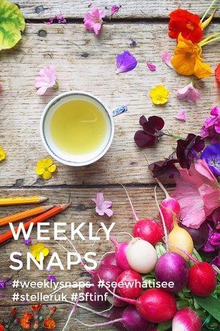WEEKLY SNAPS #weeklysnaps #seewhatisee #stelleruk #5ftinf