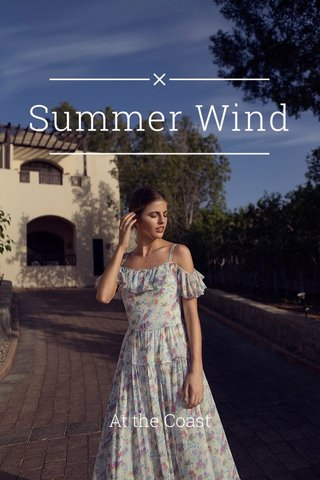 Summer Wind At the Coast