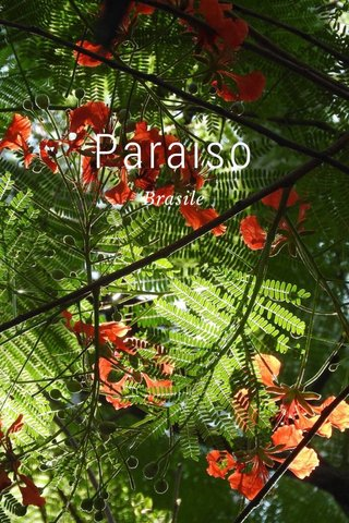 Paraiso Brasile