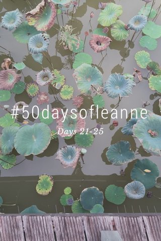 #50daysofleanne Days 21-25