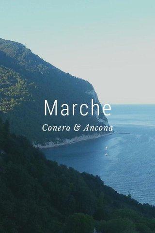 Marche Conero & Ancona
