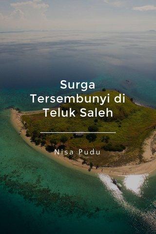 Surga Tersembunyi di Teluk Saleh Nisa Pudu