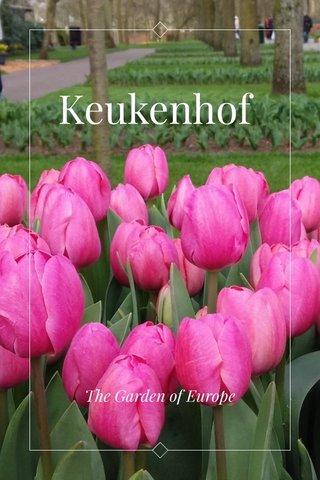 Keukenhof The Garden of Europe
