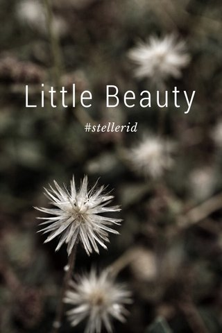 Little Beauty #stellerid