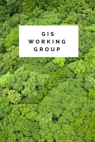GIS WORKING GROUP TFT