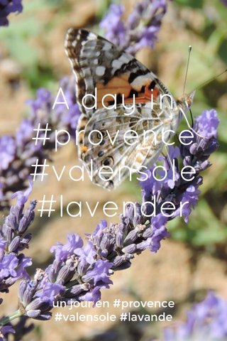 A day in #provence #valensole #lavender un jour en #provence #valensole #lavande