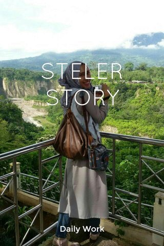 STELER STORY Daily Work