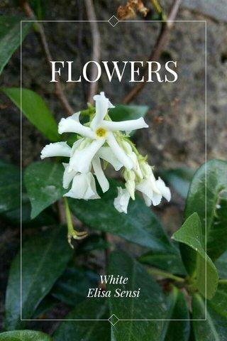 FLOWERS White Elisa Sensi