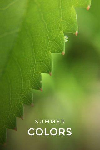 COLORS SUMMER