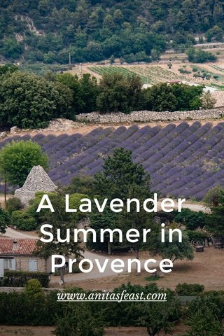 A Lavender Summer in Provence www.anitasfeast.com