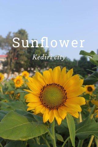 Sunflower Kediri city