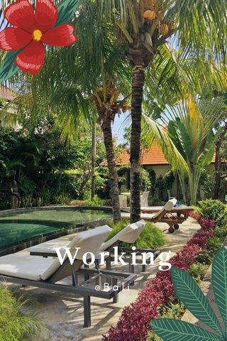 Working @Bali