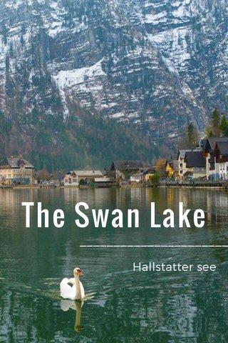 The Swan Lake ____________________________ Hallstatter see