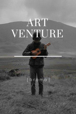 ART VENTURE |bromo|
