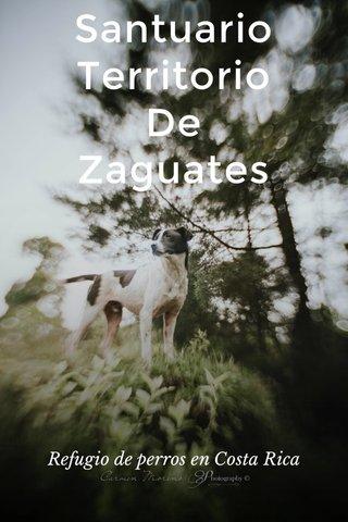Santuario Territorio De Zaguates Refugio de perros en Costa Rica