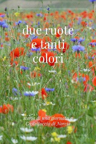 due ruote e tanti colori storia di una giornata a Castelluccio di Norcia