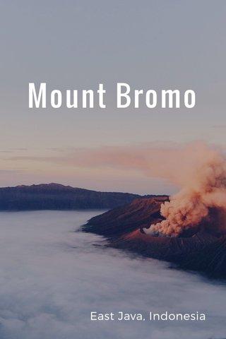 Mount Bromo East Java, Indonesia