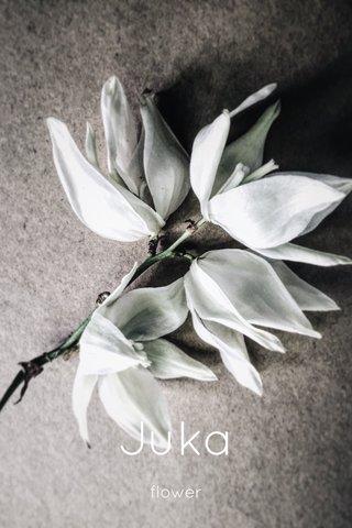 Juka flower