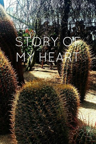 STORY OF MY HEART