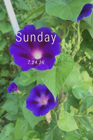 Sunday 7.24.16