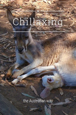 Chillaxing the Australian way