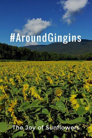 #AroundGingins The Joy of Sunflowers