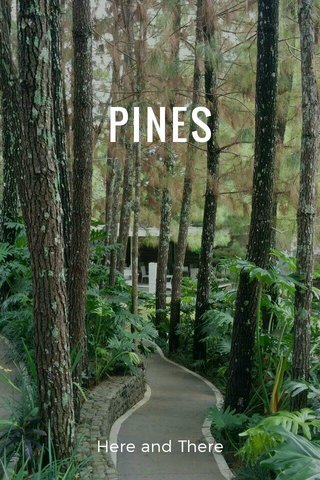 PINES Here and There