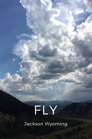FLY Jackson Wyoming