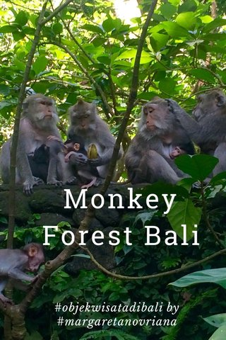 Monkey Forest Bali #objekwisatadibali by #margaretanovriana