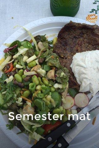 Semester mat