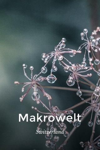 Makrowelt Switzerland