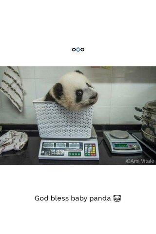 God bless baby panda 🐼