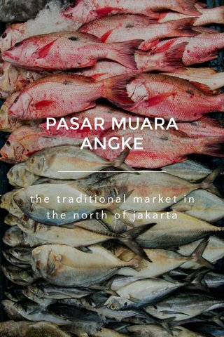 PASAR MUARA ANGKE the traditional market in the north of jakarta