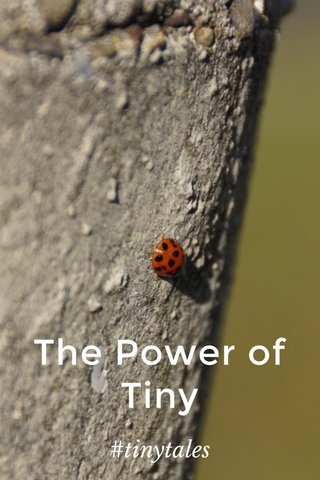 The Power of Tiny #tinytales