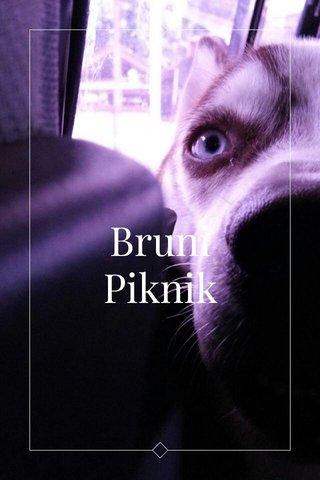 Bruni Piknik