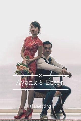 Ayank & Ester   the wedding  