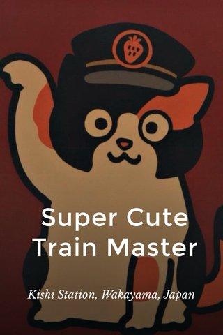 Super Cute Train Master Kishi Station, Wakayama, Japan