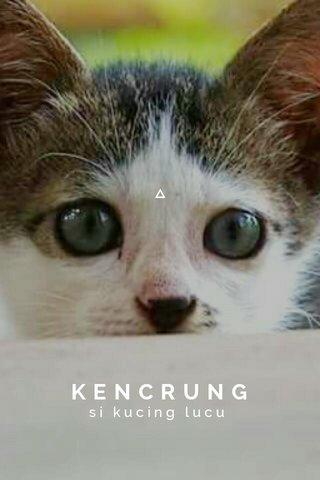 KENCRUNG si kucing lucu