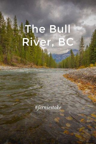 The Bull River, BC #ferniestoke