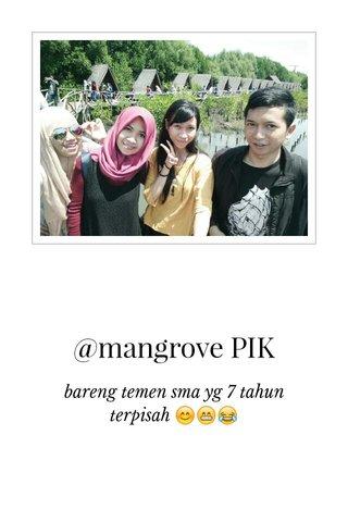 @mangrove PIK